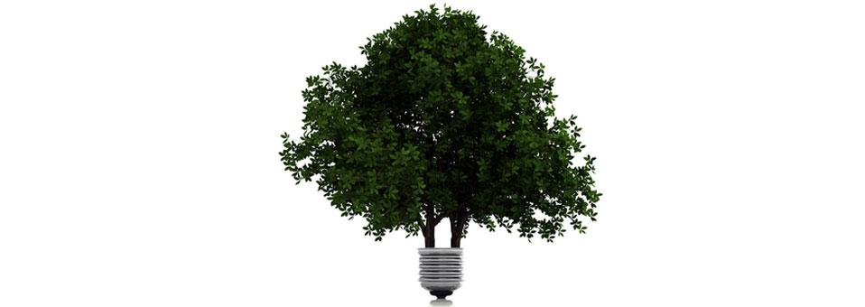 sustentabilidade_nos_negócios